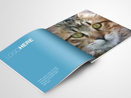 一本企业画册设计价格多少
