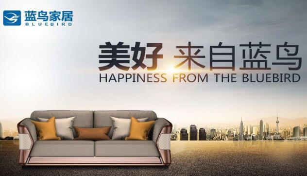 绍兴si设计公司_蓝鸟家具品牌vi设计及logo设计
